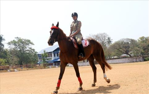 horse ride by NCC  Cadet
